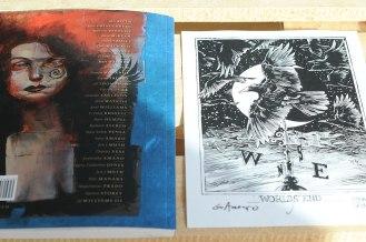 Plansze do Sandmana - tylnia część okładki i serigrafia z autografami.